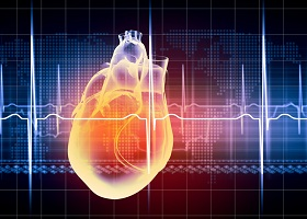 Facilitating cardiac decision-making at the point of care