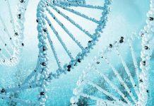 14849 - Medical_Fair_-Diagnoses_Article.jpg