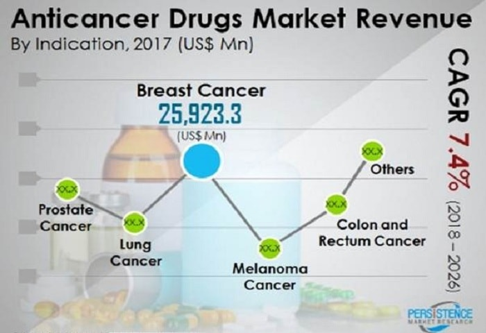 Newer Cancer Treatment Options and an Ever-increasing Drugs