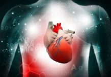 World first in AI helps scan heart disease patients to predict heart attacks and stroke