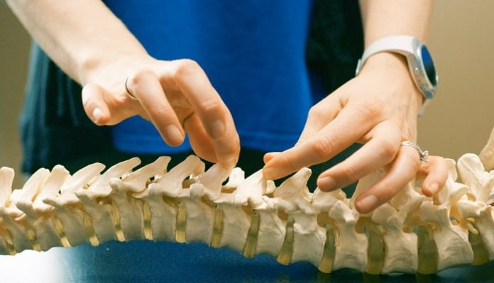 5 Important Reasons to Visit a Chiropractor Regularly