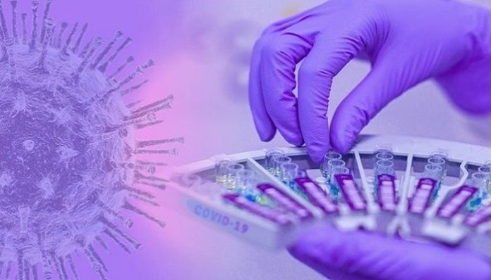 Syngene and HiMedia partner to manufacture Covid-19 test kits in India