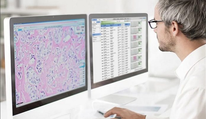 Paige Receives FDA Clearance for the FullFocus Viewer for Digital Pathology