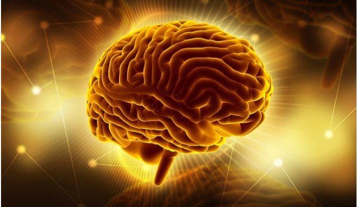 Stentrode brain-computer interface receives breakthrough device designation from FDA