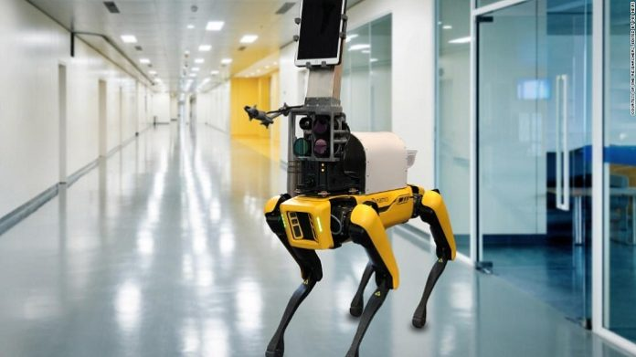 Researchers have built a dog-like robot nurse to remotely measure patients vital signs