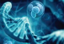 Regenerative Medicine Market Rapidly Growing Worldwide at Healthy CAGR