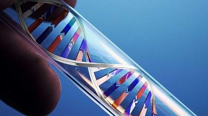 MTHFR Gene Mutation - Symptoms And Treatments