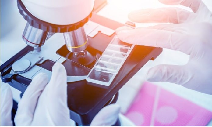 3 Important Insights From Cancer Research In The Past Decade