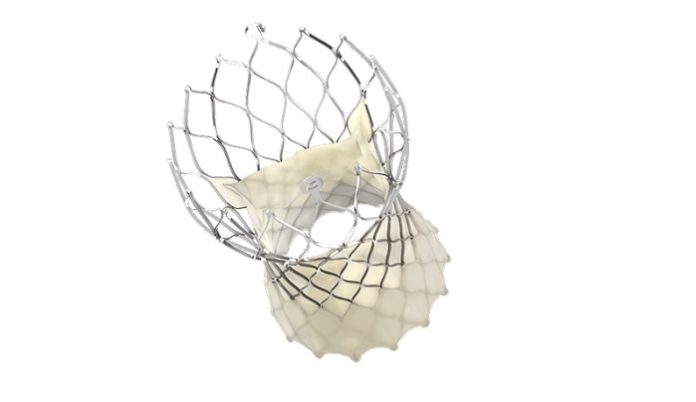 Medtronic Evolut TAVR System Receives Updated U.S. Labeling Revising Precaution for Treatment of Low-Risk Patients with Bicuspid Aortic Stenosis